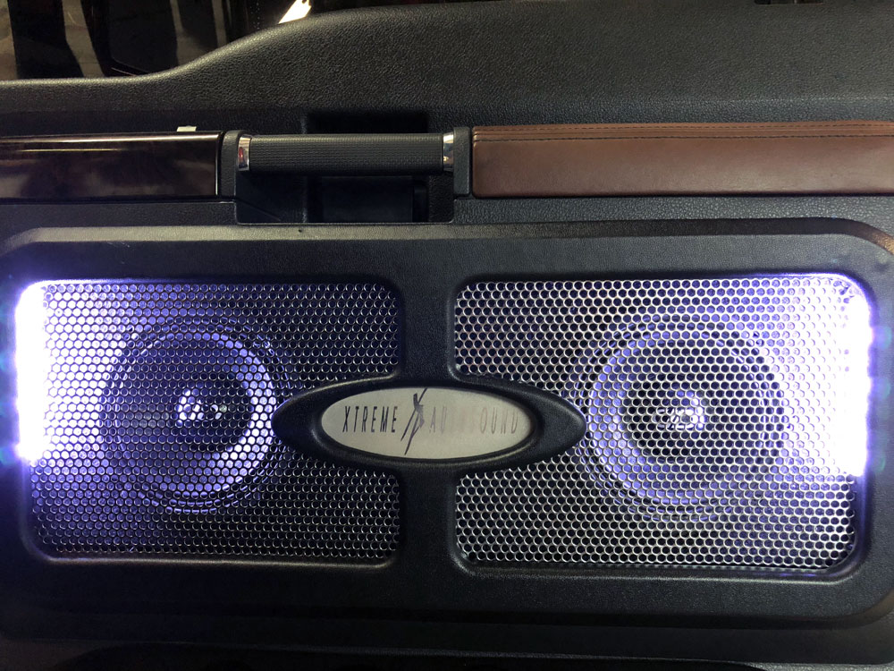 Mids and Tweeters with Custom Grill and Purple LED