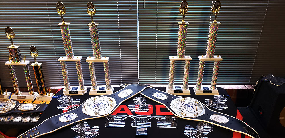 Bryant Radio car audio awards