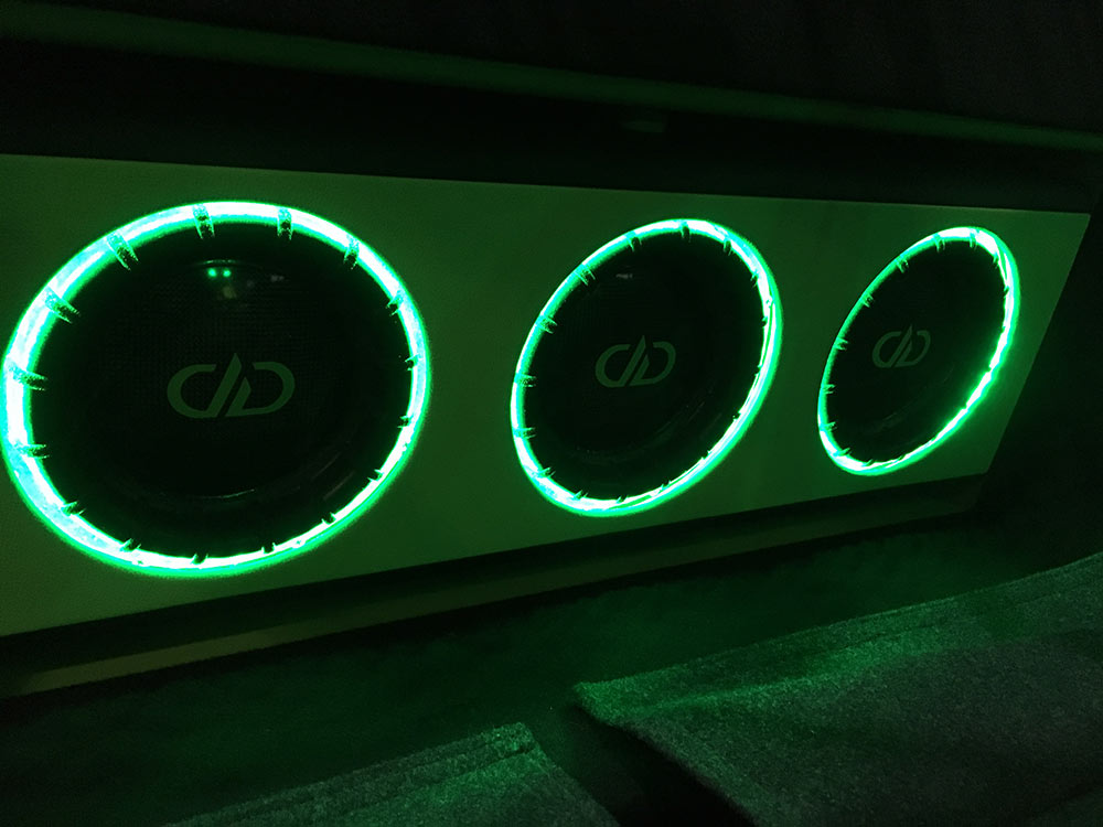Photo of DD subwoofers up close in Real Audio build